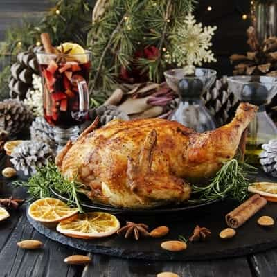 ALTERNATIVES TO CHRISTMAS TURKEY