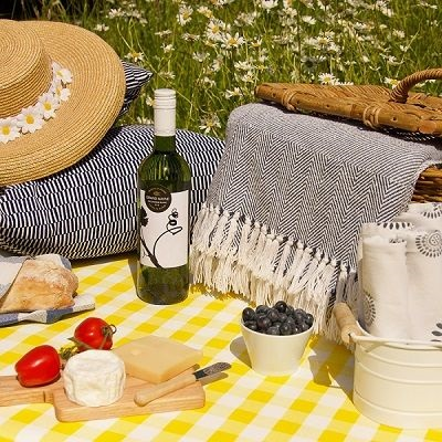 PICNIC WITH GINGHAM