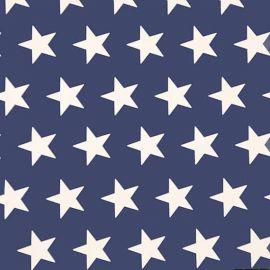 Big Star Denim Blue PVC tablecloth