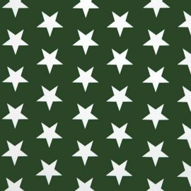 Big Star green PVC tablecloth
