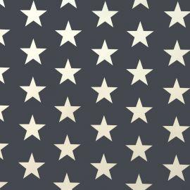Big Star grey PVC tablecloth