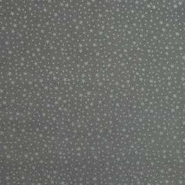 Christmas Star Silver oilcloth tablecloth